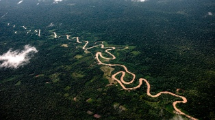 El gobierno de Bolsonaro cree que habrá una futura población china en la frontera con Surinam