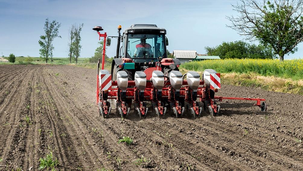 La producción conjunta de trigo y cebada en la campaña 2021/22 alcanzará las 23,6 millones de toneladas, sobre una superficie implantada de 7,65 millones de hectáreas