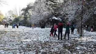 Comenzaron las nevadas en Mendoza