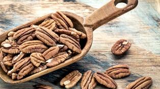 Presentaron proyectos para potenciar la competitividad en la cadena de valor de los frutos secos