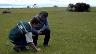 Anuncian nuevo paro de los Funcionarios del Servicio Agrícola y Ganadero