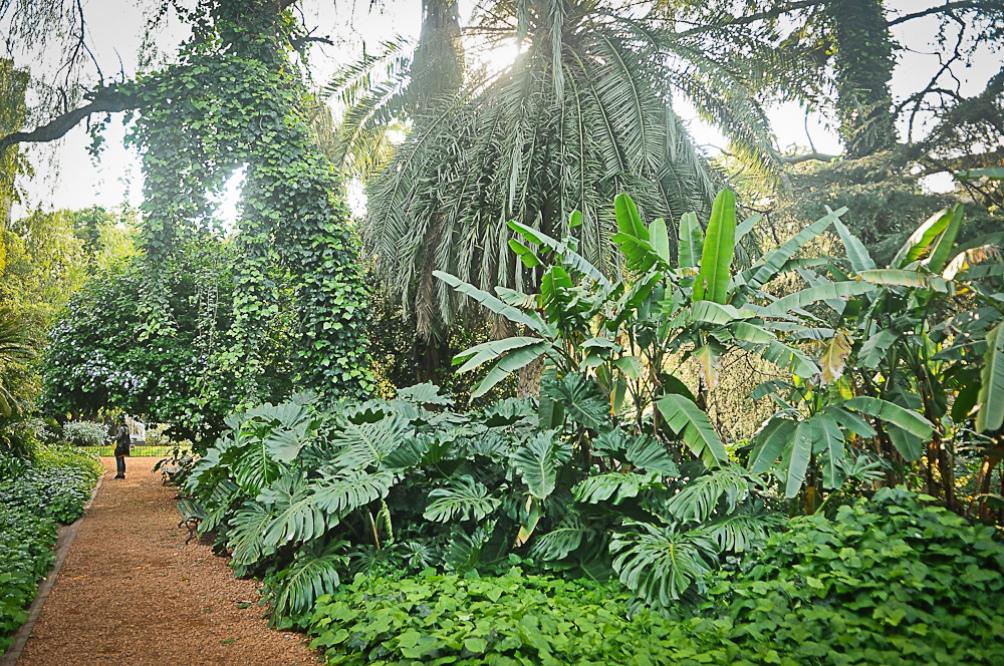 La permanencia máxima en el Jardín Botánico será de dos horas y media.