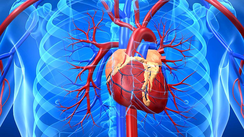 Hay riesgo de hasta 9000 muertes por problemas cardiovasculares
