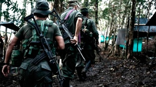 Asesinaron a 51 líderes sociales y 10 ex miembros de las FARC en lo que va de 2020