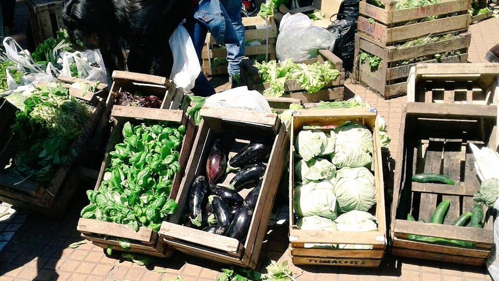 Los productores buscan que el Estado nacional, provincial y municipal implementen medidas para que no haya intermediarios