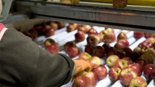 Agroindustria entrega $70 millones a productores de peras y manzanas