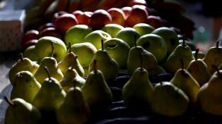 El Senasa negocia con Brasil para que se abra la frontera a la fruta