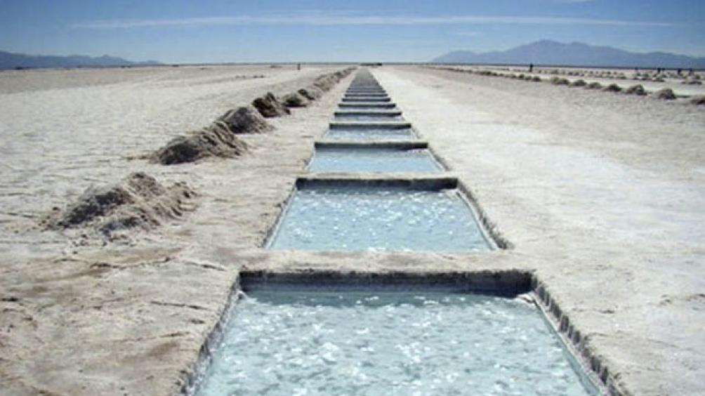 Se estima que se pueden llegar a extraer 350 mil toneladas anuales.