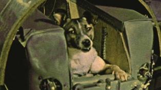 Hace 60 años la perra Laika abría la carrera espacial