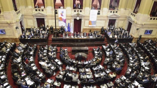 El debate sobre las vacunas en el Congreso: la oposición cuestionó una ley que apoyó en octubre