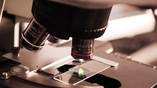 Científicos argentinos descubrieron micro moléculas de ARN en el virus SARS-CoV-2