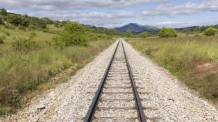 ¿Cómo se desarrollará la reactivación del Tren Norpatagónico?