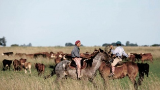 Tabaré Vázquez anunció medidas para detener las protestas del sector rural