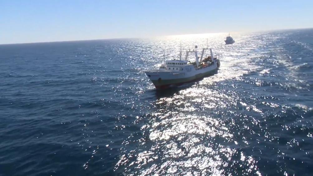 Cancillería recordó que el trabajo mancomunado permitió que, desde fines de 2020, la Prefectura haya identificado y realice un seguimiento pormenorizado y diario de 314 buques pesqueros.