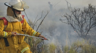 """Protección Civil afirmó que los incendios forestales en las provincias """"no representan peligro"""""""