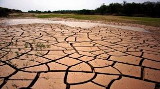 Preocupación en muchas regiones productivas por la sequía