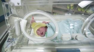Por el aumento de la temperatura global, 25.000 bebés nacieron de forma prematura