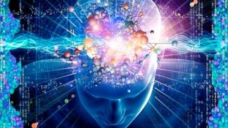 La memoria de corta y larga duración se producen debido a fenómenos moleculares y neuroquímicos diferentes. ´
