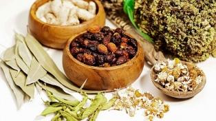 Tafí Viejo será sede del Congreso Internacional de Medicina Ancestral