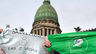 """""""Hay buena predisposición"""" en el Senado para debatir el aborto"""