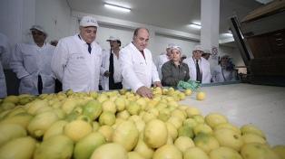 El jueves parte el primer embarque de limones tucumanos a China