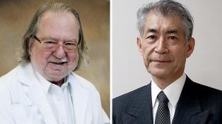 Un estadounidense y un japonés comparten el Nobel por terapias contra el cáncer