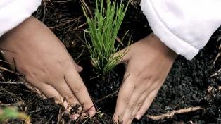 Naciones Unidas financiará proyectos ambientales de Corrientes