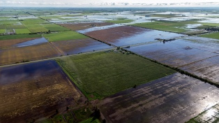 """Ciciliani advirtió que la situación """"está muy complicada"""" por las inundaciones"""