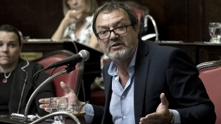 """""""El freno a la pedofilia es parte de la lucha contra las mafias"""", dijo el senador Costa"""