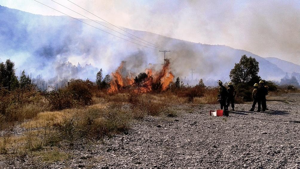 Los incendios simultáneos se declararon el 9 de marzo pasado en la zona de la cordillera de Chubut.