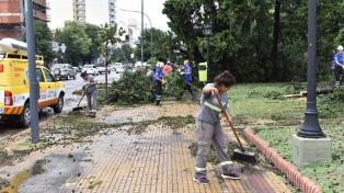 Más de 200 árboles caídos y zonas sin luz tras un temporal de viento