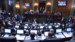 La Legislatura dio el primer paso para dejar firmes las rejas de Plaza de Mayo