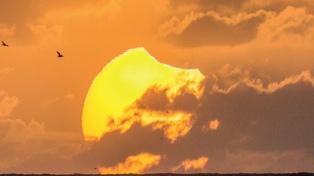 Inauguran en el Planetario una muestra sobre eclipses totales de sol