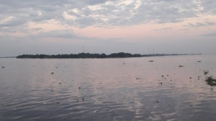 Las lluvias no paran y el río Paraguay ya superó la línea de evacuación en la capital de Formosa
