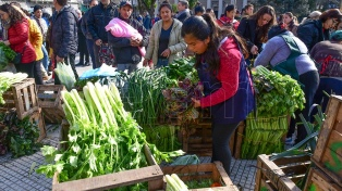 El Gobierno regularizará la actividad de vendedores ambulantes y lanzará distribuidora popular