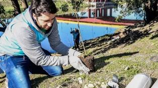 Plantaron mil árboles autóctonos para favorecer la biodiversidad