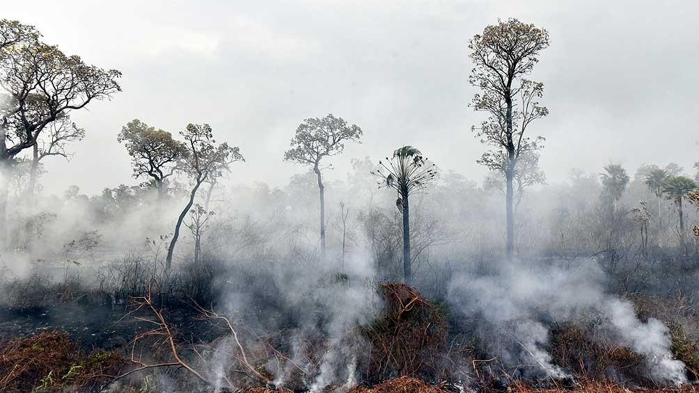 """Casi 200 organizaciones ecologistas y de la sociedad civil brasileña enviaron una carta a Biden alertando de que las soluciones para la Amazonía no pueden darse """"con negociaciones a puerta cerrada con su peor enemigo""""."""