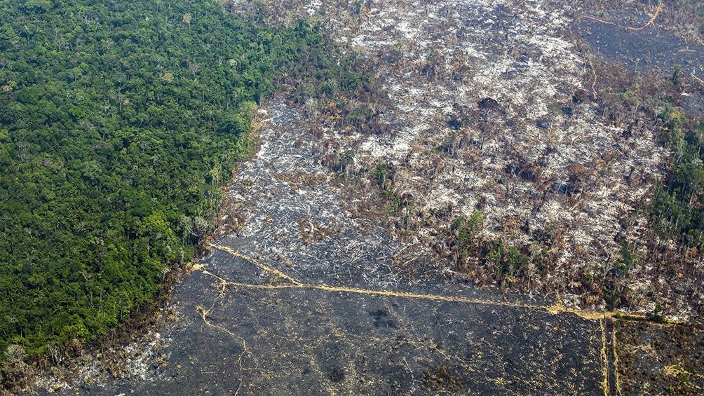El Instituto Nacional de Pesquisa Espacial (Inpe) calculó que 11.088 kilómetros cuadrados de bosques fueron talados en 2020 en Brasil.