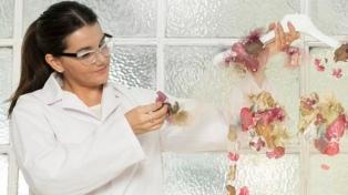 Una científica argentina creó un material con yerba mate que se aplica a la moda