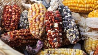 Comienza la Semana de los Productos Andinos en Buenos Aires