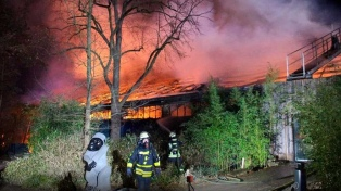 Unos 30 animales murieron al incendiarse un zoológico por globos lanzados en festejos de Año Nuevo