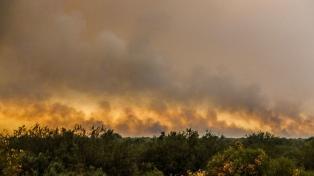 Contienen un incendio forestal de 50 hectáreas en Tupungato