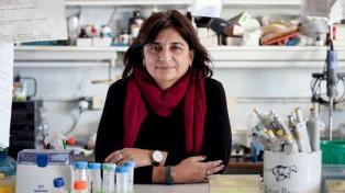 """Ana Franchi: """"La mirada de género en ciencia no es sólo el cupo sino qué se investiga y cómo"""""""