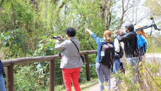 Turistas avistadores de aves de todo el mundo visitan la Reserva Ecológica Costanera Sur