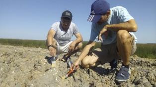 Hallaron en San Pedro restos de una playa marítima con más de 5.000 años de antigüedad