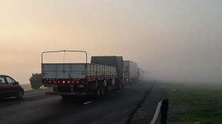Coordinan acciones para garantizar la seguridad de los trabajadores del transporte