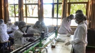 Otorgarán créditos a tasa baja a empresas y cooperativas que contribuyan a combatir la pandemia