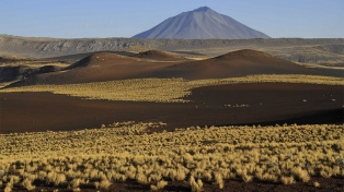Turismo virtual: los desarrollos argentinos para recorrer lugares y aliviar el aislamiento