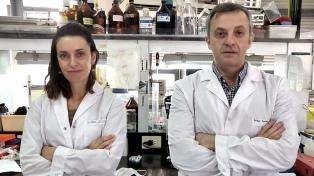 Logran importantes avances en el desarrollo de tests rápidos que buscan coronavirus