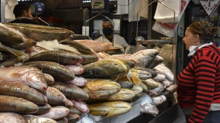 Detectaron residuos de 42 fármacos en pescados que se consumen en Córdoba